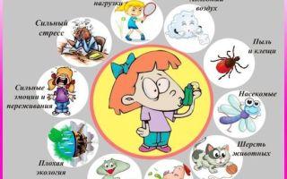 Профилактика бронхиальной астмы: первичная и вторичная