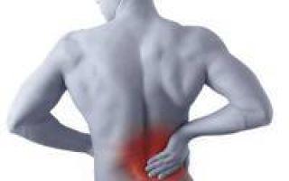 Палочка коха: сколько живет в помещении, анализ и лечение