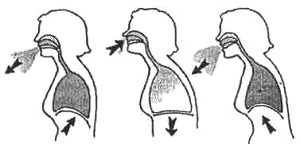 Дыхательная гимнастика бодифлекс для похудения
