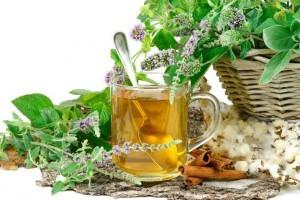 7 лучших отхаркивающих трав при бронхиальной астме