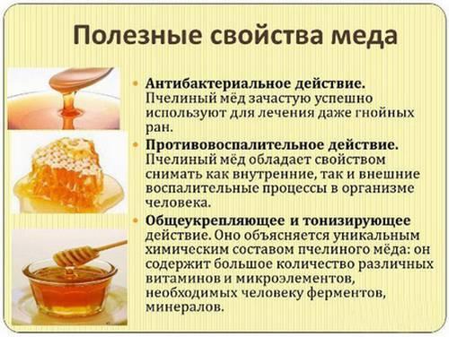 Редька от кашля — лечебные рецепты и показания к применению