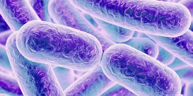 Что такое эпиглоттит и как правильно его лечить?