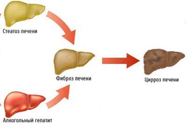 Флавамед сироп и таблетки от кашля: инструкция по применению