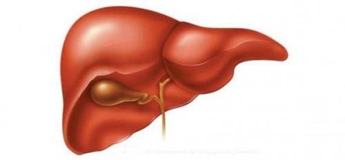 Цвет языка при скарлатине и другие симптомы этого заболевания