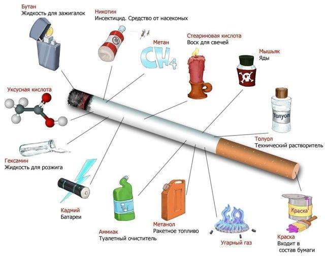 Каково влияние алкоголя и табака на организм человека?