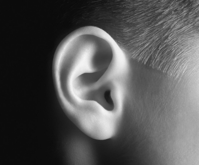 Ухо и нос: как они связаны, особенности строения