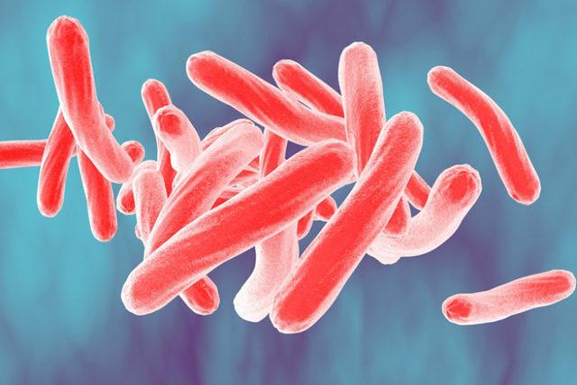 Ингаляции при туберкулезе: можно ли их делать и какие эффективней