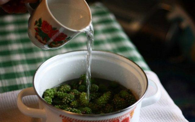 cосновые шишки от кашля: сироп, варенье и отвар. Что лучше?