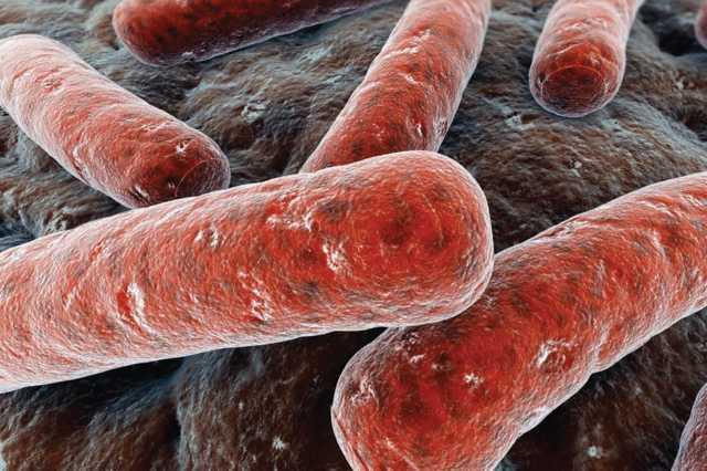 Носителей туберкулеза много: особенности болезни