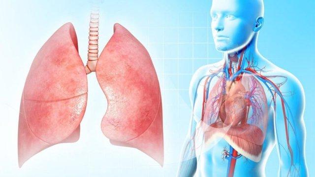 Левосторонняя пневмония у взрослого и ребенка: симптомы, лечение
