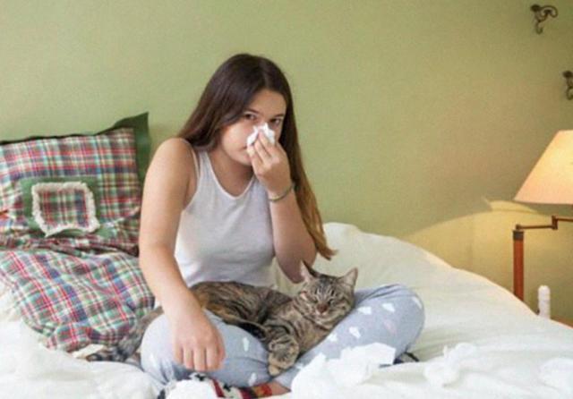 Московские ученые изобрели вакцину от аллергии на кошек