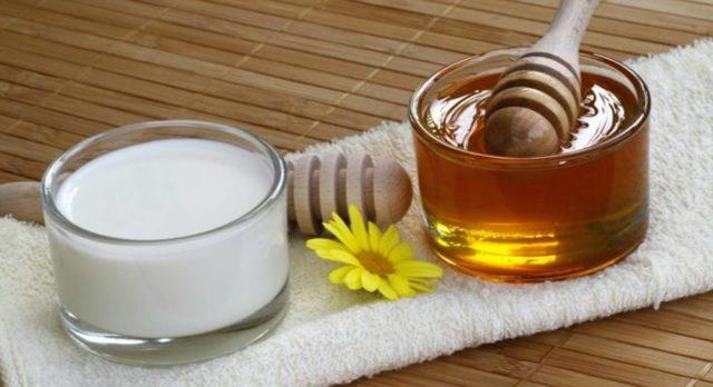 Молоко с медом от кашля детям и взрослым: лучшие рецепты