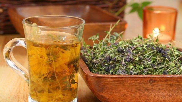 Рецепты с душицей от кашля: особенности приготовления