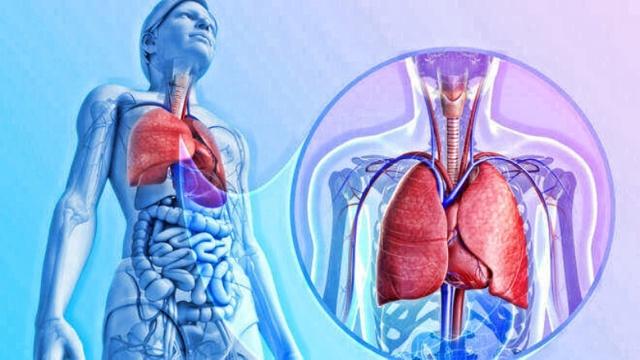 Основные симптомы перехода простуды в пневмонию