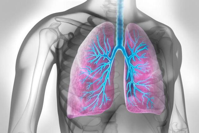 Микоплазменная пневмония: что это такое, симптомы и лечение