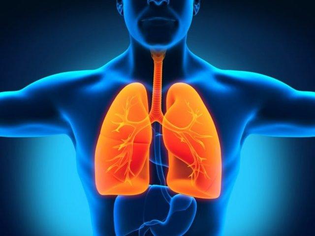 Стол №11 или какое должно быть питание при туберкулезе легких?