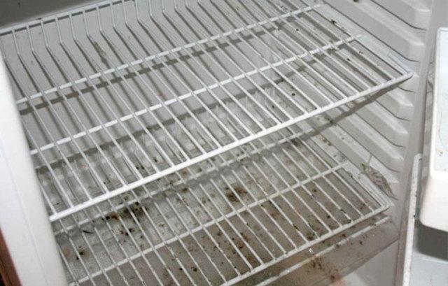 Как удалить плесень из холодильника: секреты и советы