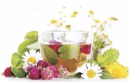 5 рецептов домашних леденцов от кашля для детей и взрослых