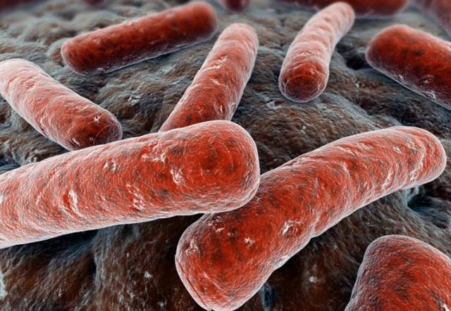 Какой инкубационный период у туберкулеза легких?